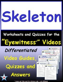 Differentiated Worksheet, Quiz, Ans for Eyewitness * - Skeleton