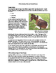 Differentiating Male and Female Horses Fact Sheet