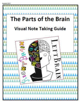 DIFFERENTIATION Parts of the Brain Visual Note Guide/Graphic Organizer with KEY