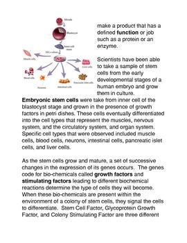 Differentiation of the Cell Common Core Activities