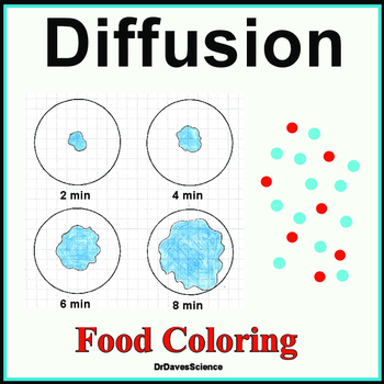 Diffusion Activity and Teaching Resource: Importance to the Cell