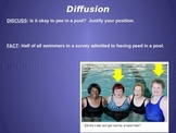 Diffusion Animation - Peeing in Pool
