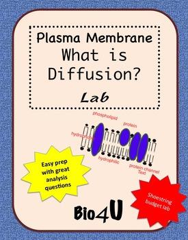 Diffusion Lab