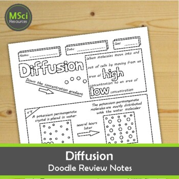 Diffusion Middle School Biology Doodle Notes