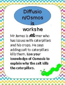 Diffusion/Osmosis