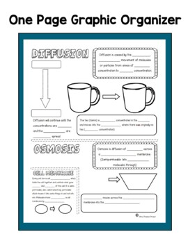 Diffusion & Osmosis Doodle Notes & Activities
