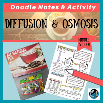 Diffusion and Osmosis Sketch Notes, Activities, & PPT