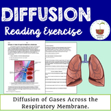 Diffusion Reading Exercise