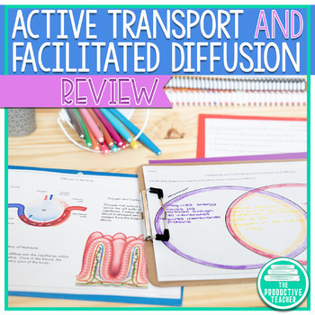 Diffusion and Active Transport - Cheat Sheet