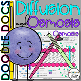 Diffusion and Osmosis Coloring Worksheet Includes 8 Differ