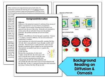 Osmosis Diffusion Inquiry Lab