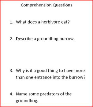 Dig It! Groundhog Informational Text and Comprehension Questions