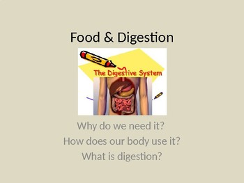 Digestion 6th Grade