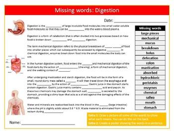 Digestion Missing Words Cloze Science Biology Starter Keywords Activity Homework