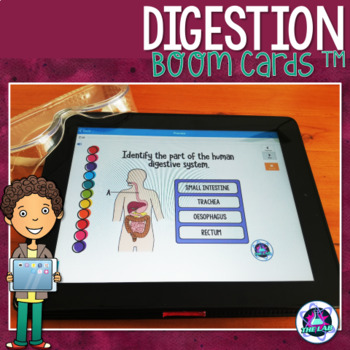 Digestion & Nutrition Boom Cards