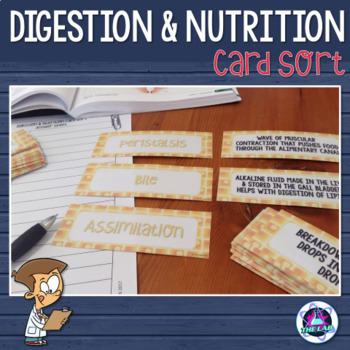 Digestion & Nutrition Vocabulary Card Sort