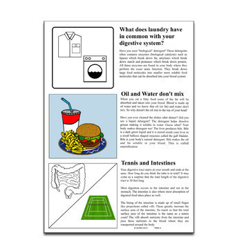Science Literacy Digestion Science Sub Plan