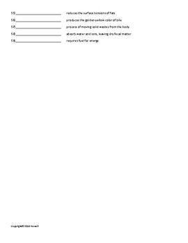 Digestion and Nutrition Vocabulary Quiz or Worksheet for Zoology