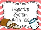 Digestive System Investigation {Hands On Lab and Diagram}