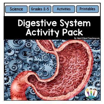Human Body Systems: Digestive System Activities & Vocabulary Posters
