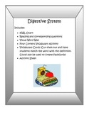 Digestive System Activity Pack