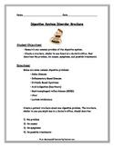 Digestive System: Digestive Disorder Brochure