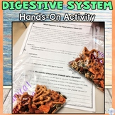 Digestive System Chemical and Mechanical Digestion Hands on Activity