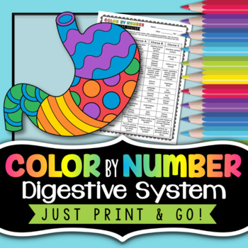 Digestive System Color by Number - Science Color By Number