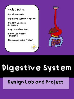 Digestive System Design Lab and Project
