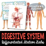 Digestive System Student-Led Station Lab - Distance Learning