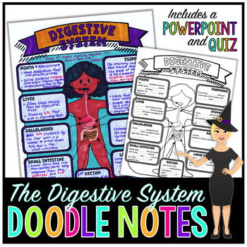 DIGESTIVE SYSTEM SCIENCE DOODLE NOTES, INTERACTIVE NOTEBOOK, MINI ANCHOR CHART