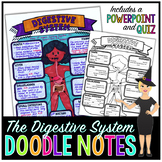 The Digestive System Science Doodle Note with PowerPoint & Quiz