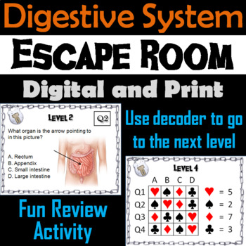 Digestive System: Escape Room - Science: Anatomy (Human Body Activity)