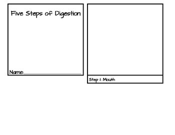 Digestive System - Five Steps of Digestion Flip book