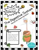 Digestive System Hands On Demonstration Packet