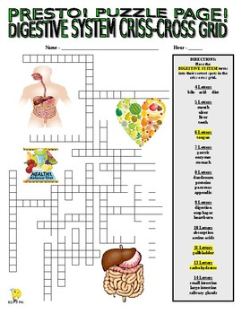 Digestive System (Human Body Puzzle Pages - wordsearch and criss-cross)