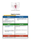 Digestive System Hyperdoc