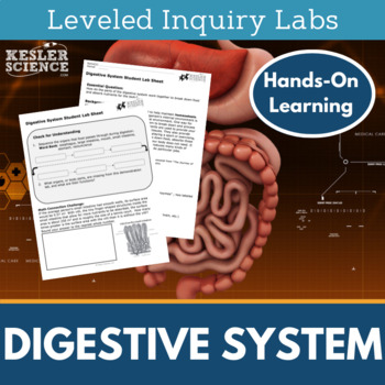 Digestive System Inquiry Labs