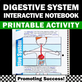 Digestive System Activities Human Body Systems Interactive Notebook 5th Grade