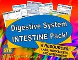 Digestive System Intestine Pack!