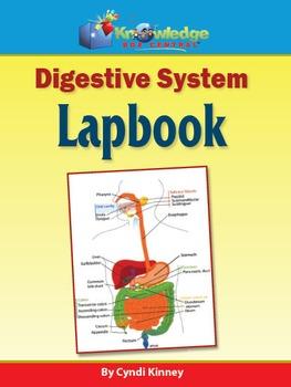 Digestive System Lapbook