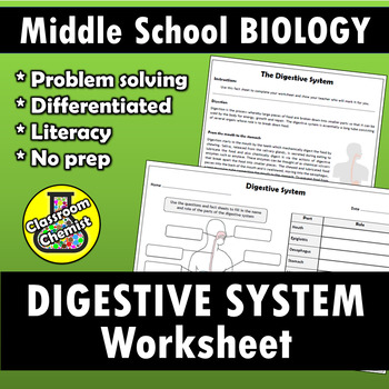 Digestive System differentiated literacy activity and worksheet