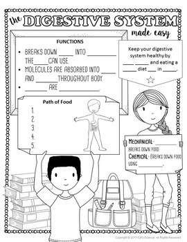 Digestive System Made Easy- Student Notes and Powerpoint