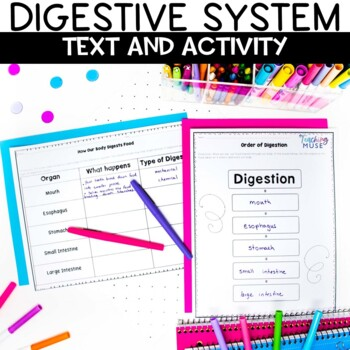 Digestive System Nonfiction Article and Sketch Note Activity