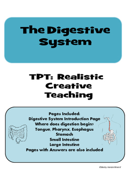 Digestive System Notebooking Pages