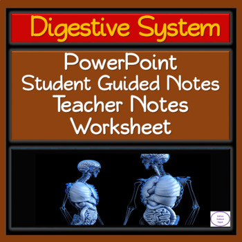 Digestive System: PowerPoint, Student Guided Notes, and 2 Page Worksheet