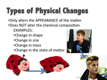 Digestive System PowerPoint: Notes & Vocabulary {Chemical & Physical Changes}