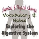 Digestive System PowerPoint: Notes & Vocabulary {Chemical