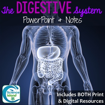 Digestive System PowerPoint and Notes