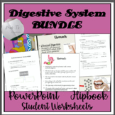 Digestive System PowerPoint and Student Worksheet